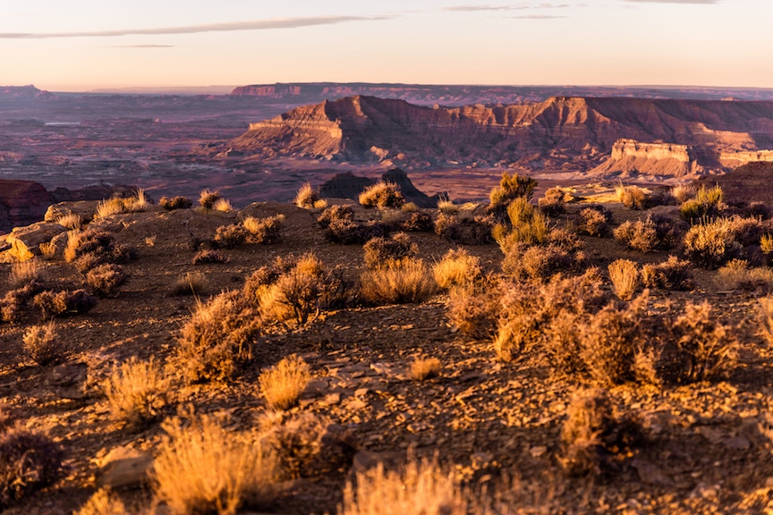 Science on the range: studying wide open landscapes in the American West