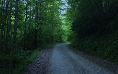 Delanna Studi: Walking the Trail of Tears