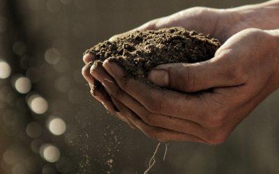 Practicing regenerative agriculture