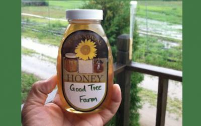 Food, faith, and farming — the Good Tree Farm