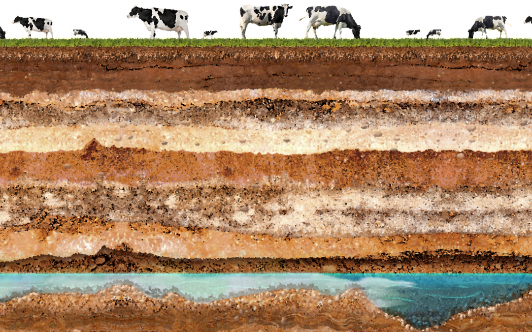 Toxic neighbors: The demise of a dairy