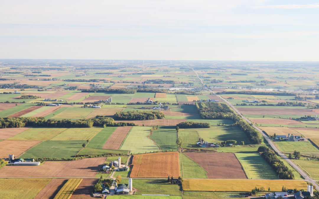 Slowing climate change, one farm at a time