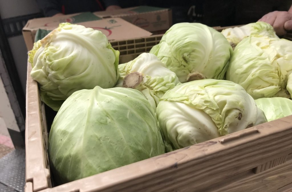 Feeding our most vulnerable communities: Hunger in New Mexico