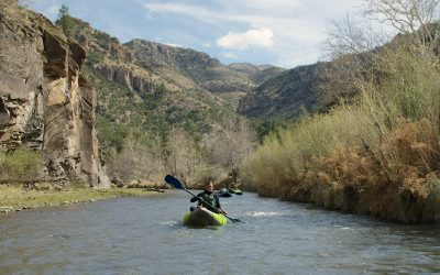 Life and death on the Gila River