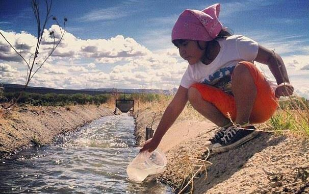 First nations food–rebuilding resilience across the land