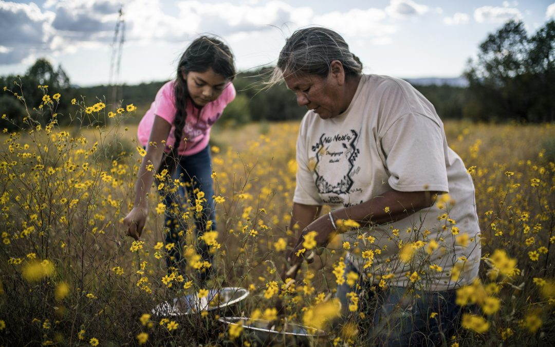 Renewing Native American food traditions