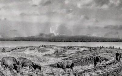 Lipan Apache: Bringing back the buffalo in Texas